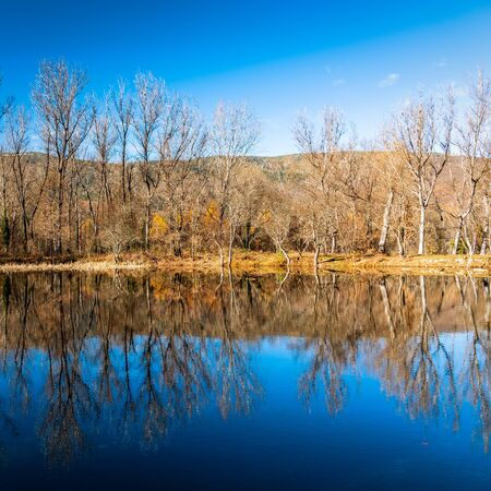 Reflections of autumn forest on lake in the fall season Imagens