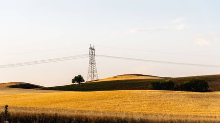 Countryside landscape at summer with yellow fields and electric lines 版權商用圖片
