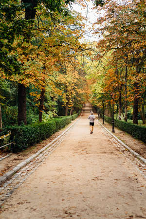 Man running in Park during the fall