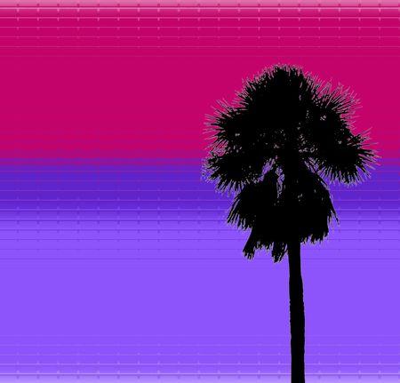 tropical palm design photo