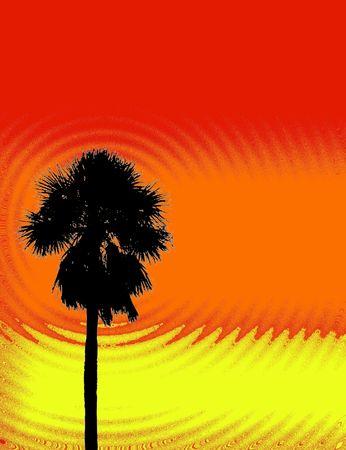 palm ripples design photo