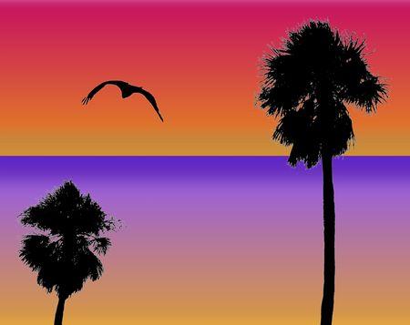 palms and bird silhouette design photo