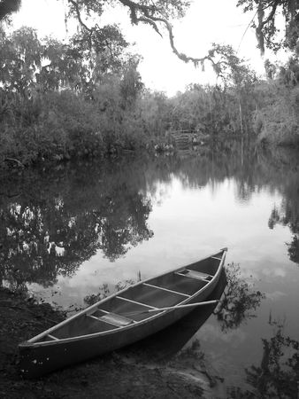 bayou swamp: canoe on the bayou