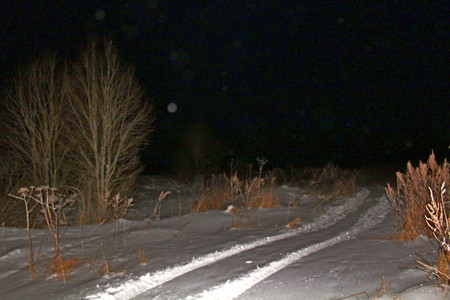 Dry, last years grass, covered with snow, with moonlight and artificial lighting. Stock Photo