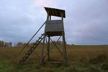 Biotechnical structure intended for hunting and watching wild animals, against the backdrop of autumn nature.