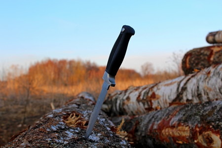Cold weapons against the background of spring nature. Stockfoto