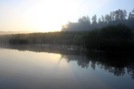 A small river in the middle of summer in the predawn fog. Unique image of the surrounding nature