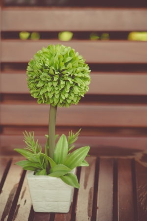 vintage green flower in small vase on a table  photo