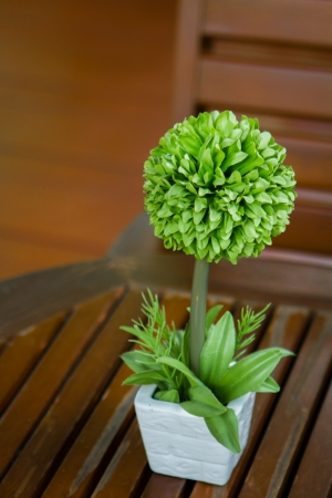 green flower in small vase on a table  photo