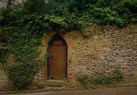 Wooden Door in a Wall 版權商用圖片