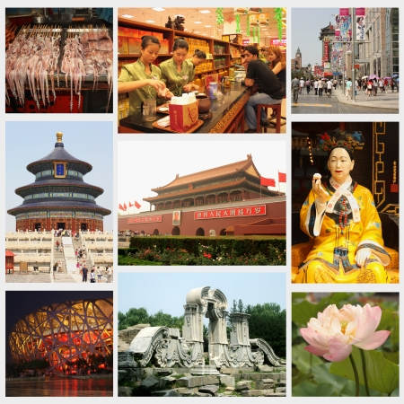 Beijing Collage - : Tea shop, Wangfujing street, Temple of Heaven, Forbidden city, Cisi emperor, Birds Nest National Stadium, Old Summer Palace - August 9 - 11, 2010