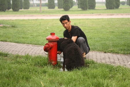 Man is taking care of his dog and giving water during summer heat, Luoyang, China -  July 21, 2010
