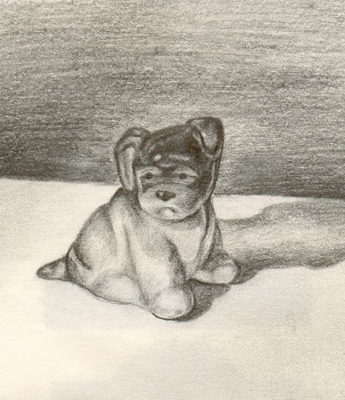 Pencilled picture of a sad lonely dog photo