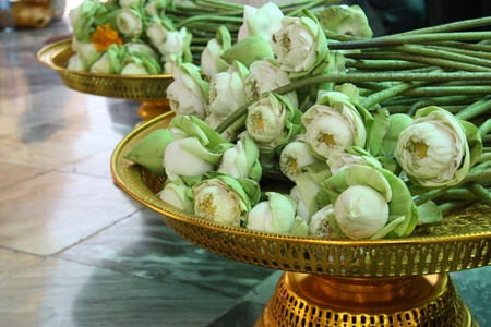 Sacrificial lotus flowers on a golden tray, in a Buddhist shrine in Thailand photo