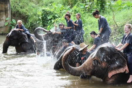 Elephant riding, Chiang Mai, Thailand - 27.07.2011