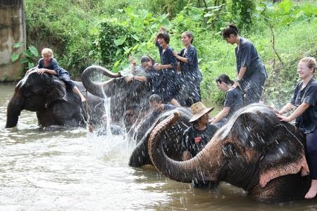 turismo ecologico: Montar en elefante, Chiang Mai, Tailandia - 27072011