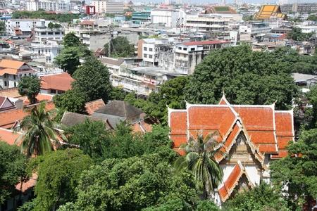 aerial animal: Bird eye view of Bangkok, Thailand Editorial