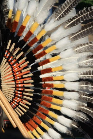 Detail of Native South American costume - Condor wing photo