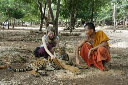 sacramental: Buddhist monk and young tourist girl with the Tiger in a Tiger Temple, Kanchanaburi province, Thailand - August 05th, 2011 Editorial