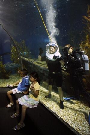 Brave touristische Tauchen in einem riesigen Ozean Aquarium mit Haien und Menschen beobachtete ihn in Siam Ocean World, Bangkok, Thailand - 16.08.2011