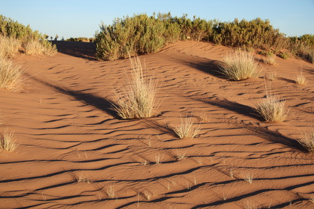 mirage: Sunset long shadows in the sand dunes of Altiplano, South America Stock Photo
