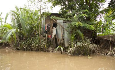 ramshackle: Poor hut in the jungle of Mekong Delta, Vietnam