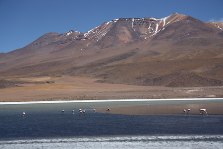 Beautiful mountain landscape in Bolivia photo
