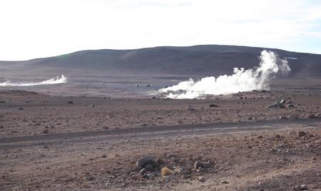 geysers: Geysers in the natural reserve Eduardo Avaroa in Bolivia