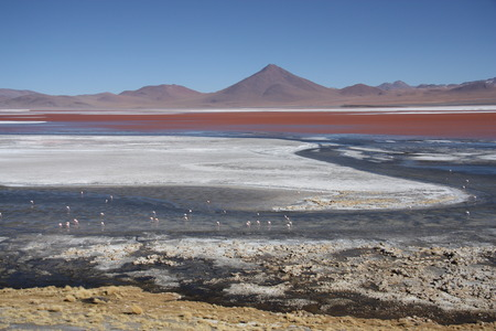 sulphuric acid: Laguna Colorada in Avaroa National Park in Bolivia South America