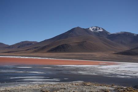 sulphuric acid: Laguna Colorada with a volcano behind the lake Bolivia South America