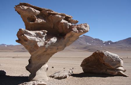 erosion: Wind erosion of rocks in Stone Valley with famous Arbol de Piedra in Atacama Desert in Bolivia