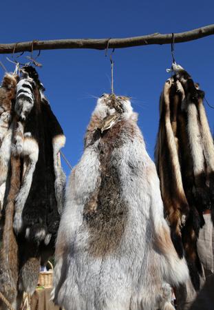 pelage: Row of wild animal skins hanging on the market