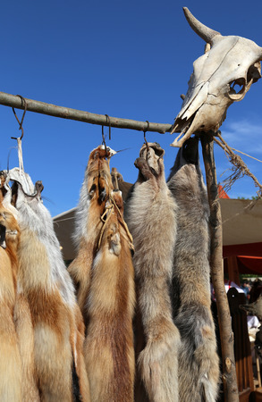pelt: Ancient hunter`s camp with wild animal tanned furs and a skull in a country market