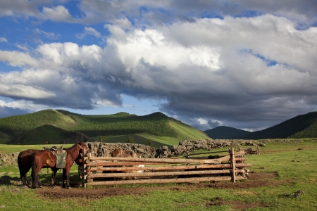 independent mongolia: A barn made from logs for the yaks of a family where they tied their horses Mongolian