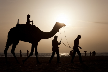 A girl riding a camel at sunset Stock Photo - 16454849