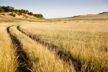 A road in the Gobi Desert. Mongolia Stock Photo - 16455114