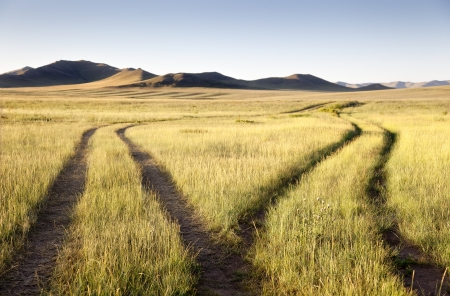 independent mongolia: Two roads meet and separate in the Gobi Desert. Mongolia