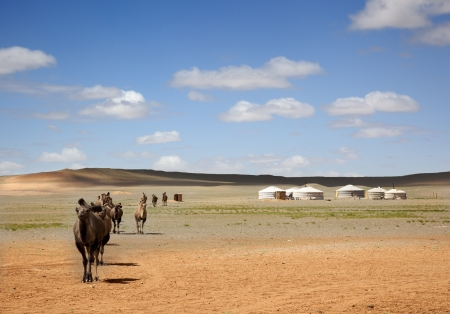A camel caravan across the desert leaving the Gers of farmers to the distance