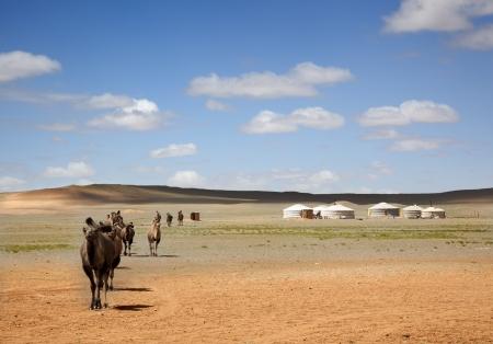 Una carovana di cammelli attraverso il deserto lasciando i Gers degli agricoltori alla distanza Archivio Fotografico - 16454859