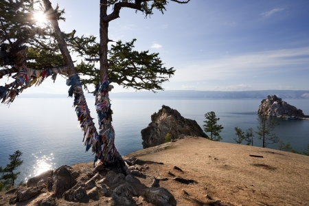 Backlight of a shamanic tree with the bottom of Lake Baikal