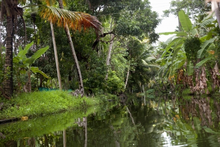 calm waters of a canal in Alappuzha Stock Photo