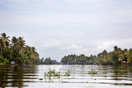alappuzha: calm waters of a canal in Alappuzha Stock Photo