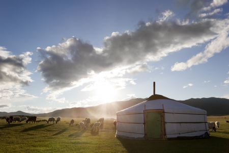 The sun rises in the Orkhon Valley while lambs graze freely Stock Photo - 17049498