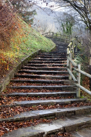 stone steps with leaves Stock Photo - 17049578