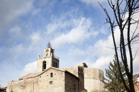a leafless tree in front of the facade of a medieval church Stock Photo
