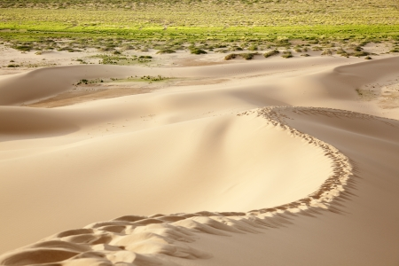 independent mongolia: footprints on top of a dune Stock Photo