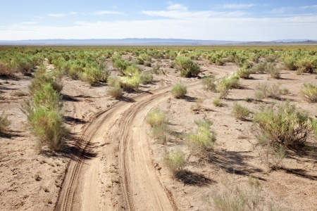 independent mongolia: Road in the middle of the Gobi Desert in Mongolia Stock Photo