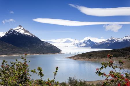 el calafate: Los Glaciares National Park in the south west of Santa Cruz province, Argentina.