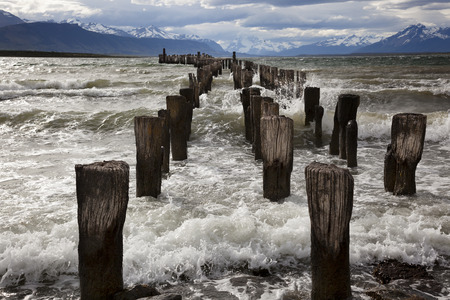 puerto natales: The remains of an old pier, now a resting place for seabirds. Puerto Natales, Chilean Patagonia.