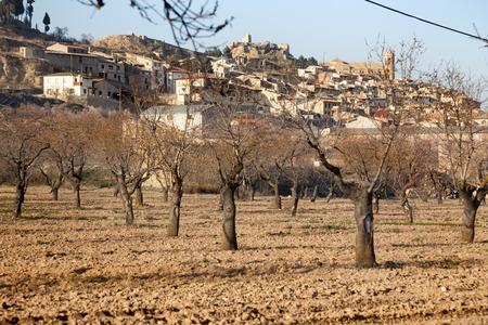 Views of La Fresneda Village
